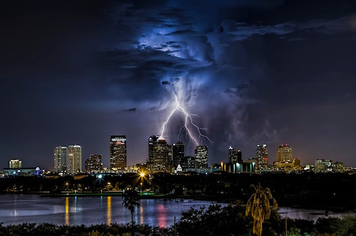 Tampa Lighting